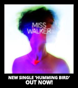 Humming Bird by Miss Walker